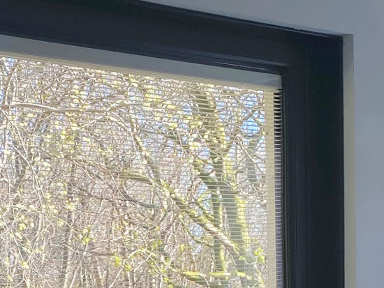 Integrated blinds image 2